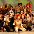 Cats bei der Jubiläumsfeier des Theater Akzent